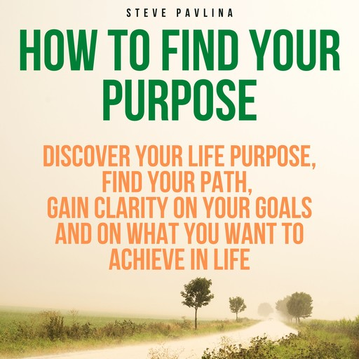 How to Find Your Purpose, Steve Pavlina