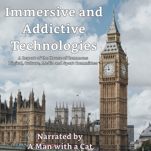 Immersive and Addictive Technologies, Man with a Cat