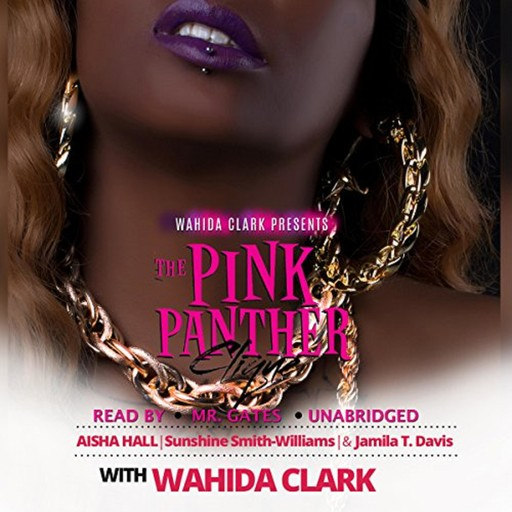 The Pink Panther Clique, Wahida Clark, Aisha Hall, Jamila Davis, Sunshine Williams