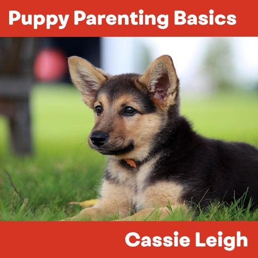 Puppy Parenting Basics, Cassie Leigh