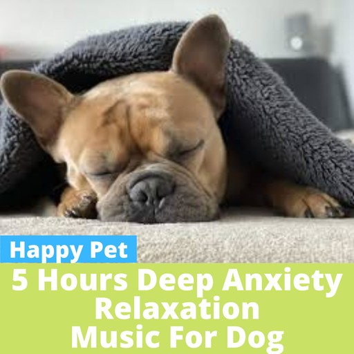 5 HOURS of Anxiety Relax Music for Dog, Happy Pet