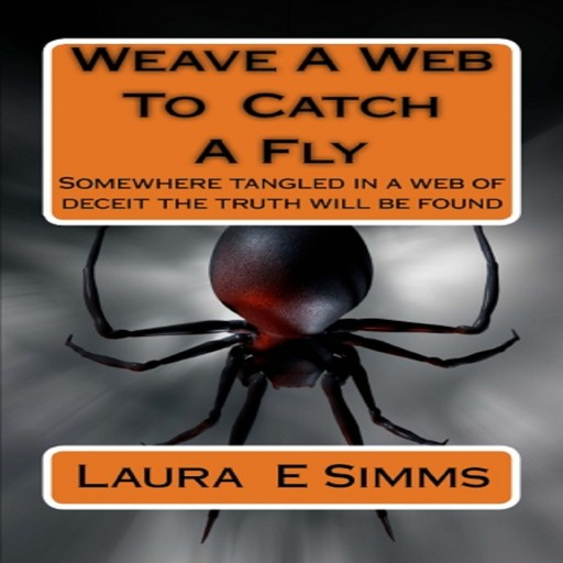 Weave A Web to Catch A Fly, Laura E Simms