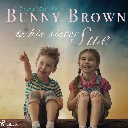 Bunny Brown and his Sister Sue, Laura Lee Hope