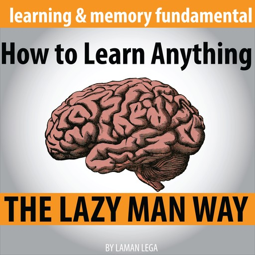 How to Learn Anything the Lazy Man Way, Hayden Kan
