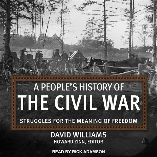 A People's History of the Civil War, David Williams