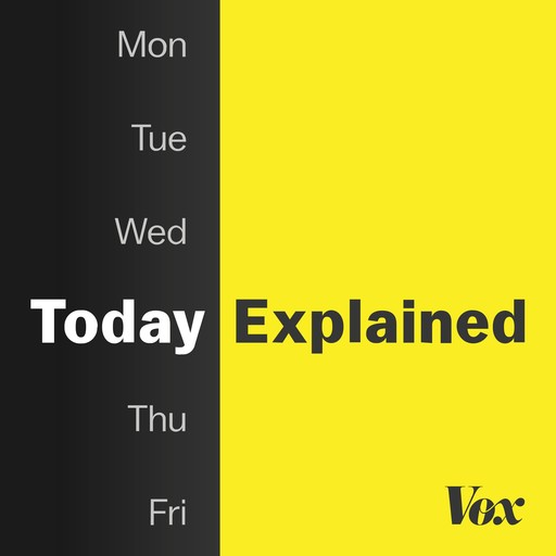 A new constitution, Vox