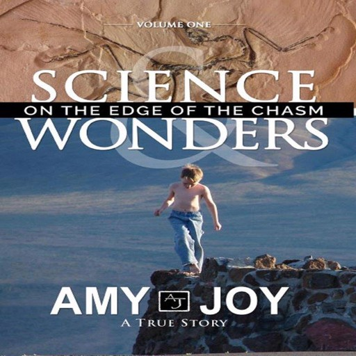Science & Wonders Vol. 1: On the Edge of the Chasm, Amy Joy