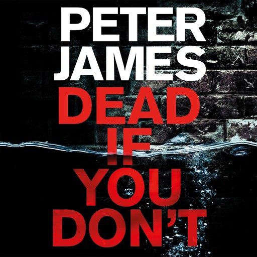 Dead If You Don't, Peter James