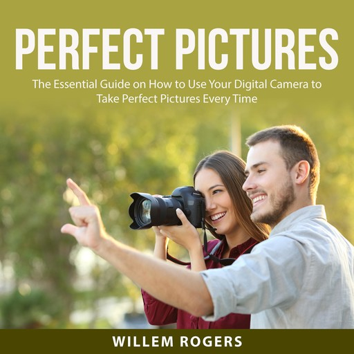 Perfect Pictures, Willem Rogers