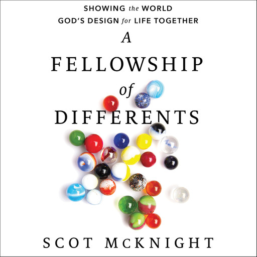 A Fellowship of Differents, Scot McKnight