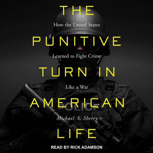 The Punitive Turn in American Life, Michael S. Sherry