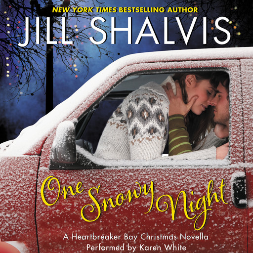 One Snowy Night, Jill Shalvis