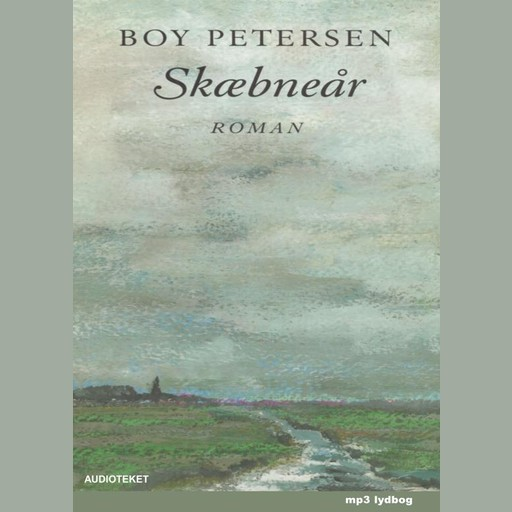 Skæbneår, Boy Petersen