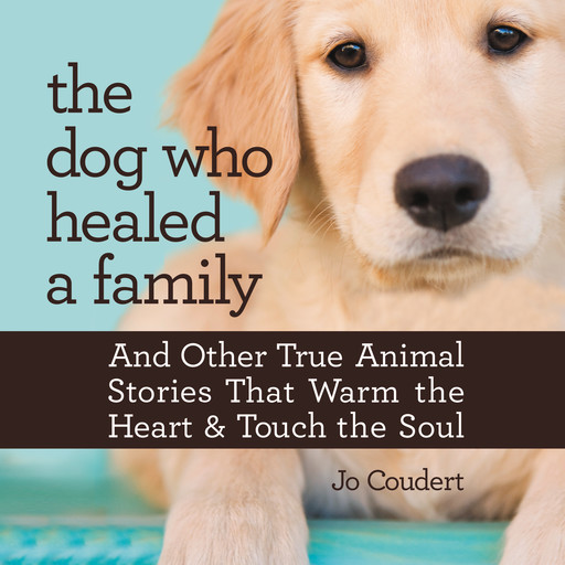 The Dog Who Healed a Family, Jo Coudert