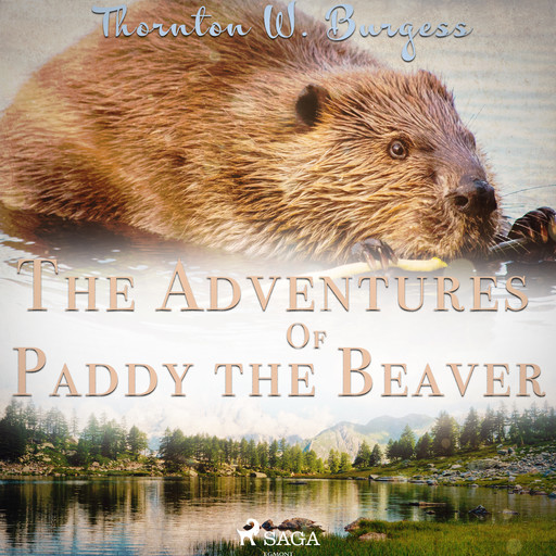 The Adventures of Paddy the Beaver, Thornton W.Burgess