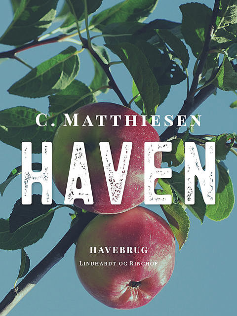 Haven, C. Matthiesen