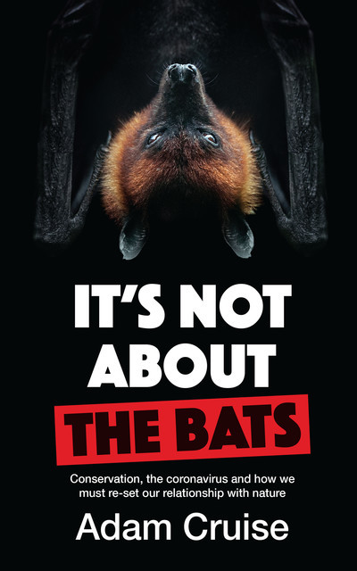 It's Not About the Bats, Adam Cruise