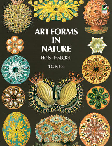 Art Forms in Nature, Ernst Haeckel