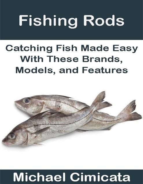 Fishing Rods: Catching Fish Made Easy With These Brands, Models, and Features, Michael Cimicata