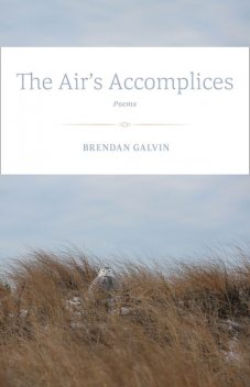 The Air's Accomplices, Brendan Galvin