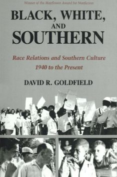 Black, White, and Southern, David Goldfield