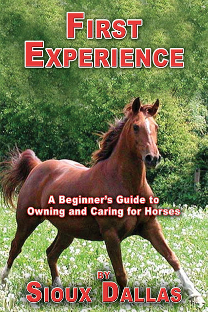 First Experience: A Beginner's Guide to Owning and Caring for Horses, Sioux Dallas