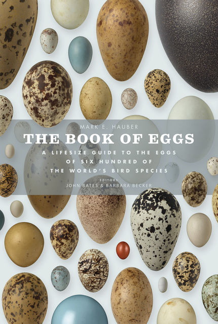 The Book of Eggs, Mark E.Hauber