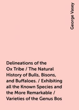 Delineations of the Ox Tribe / The Natural History of Bulls, Bisons, and Buffaloes. / Exhibiting all the Known Species and the More Remarkable / Varieties of the Genus Bos, George Vasey