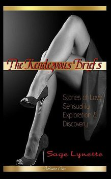 The Rendezvous Briefs, Sage Lynette