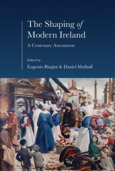 The Shaping of Modern Ireland, Daniel Mulhall, Eugenio Biagini