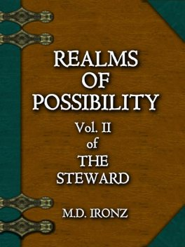 Realms Of Possibility (THE STEWARD, #2), Ironz