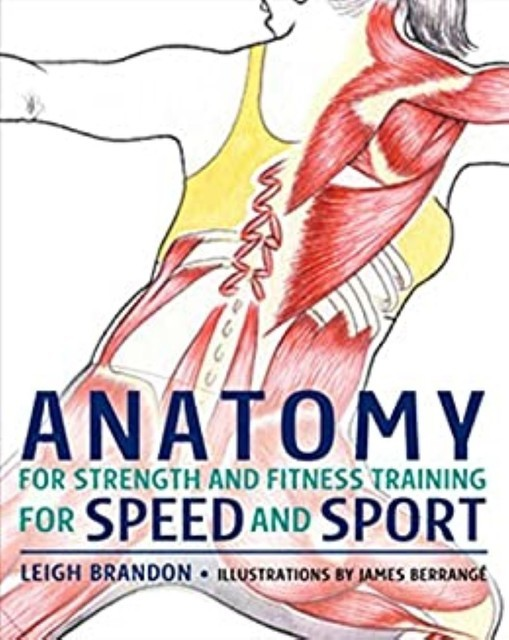 Anatomy for Strength and Fitness Training for Speed and Sport, Leigh Barandon