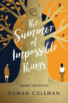 The Summer of Impossible Things, Rowan Coleman