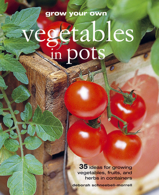 Grow Your Own Vegetables in Pots, Deborah Schneebeli-Morrell