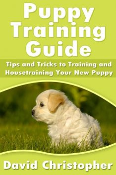 Puppy Training Guide: Tips and Tricks to Training and Housetraining Your New Puppy, David Christopher