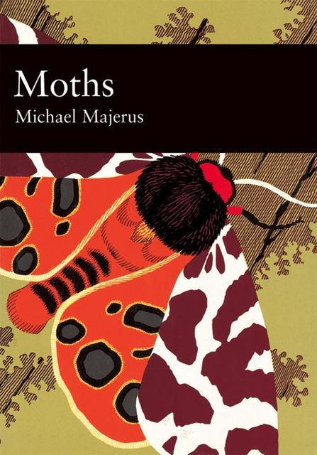 Moths (Collins New Naturalist Library, Book 90), Mike Majerus