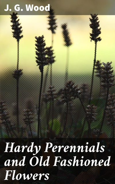 Hardy Perennials and Old Fashioned Flowers, J.G. Wood