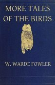 More Tales of the Birds, W.Warde Fowler