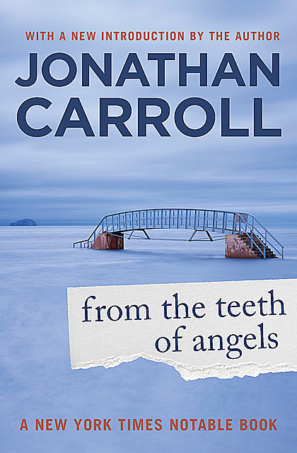 From the Teeth of Angels, Jonathan Carroll