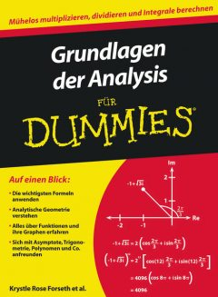 Grundlagen der Analysis fr Dummies, Deborah Rumsey, Christopher Burger, Krystle Rose Forseth, Michelle Rose Gilman