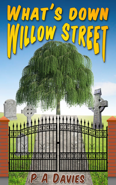 What's Down Willow Street, P.A.Davies