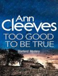 Too Good to Be True: Shetland Mystery, Ann Cleeves