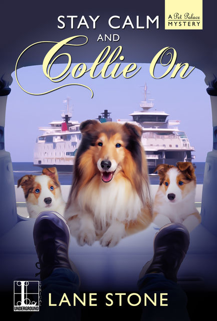 Stay Calm and Collie On, Lane Stone