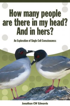 How Many People Are There In My Head? And In Hers?, Jonathan Edwards
