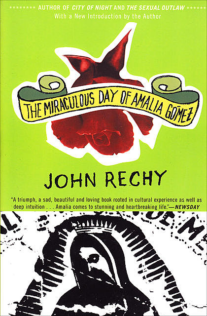 The Miraculous Day of Amalia Gómez, John Rechy