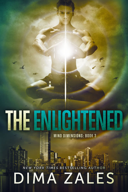The Enlightened, Dima Zales
