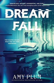 Dreamfall, Amy Plum