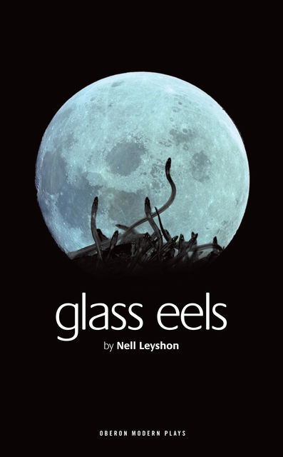 Glass Eels, Nell Leyshon
