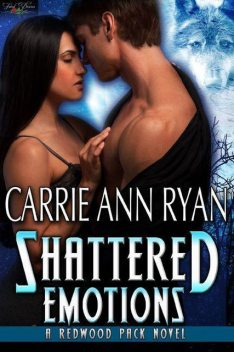 Shattered Emotions, Carrie Ryan