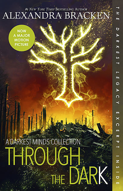 Through the Dark (A Darkest Minds Collection) (A Darkest Minds Novel), Alexandra Bracken